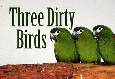 ThreeDirtyBirds-400